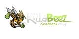 KillaBeez SeedBank